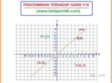 PENCERMINAN TERHADAP GARIS Y=X